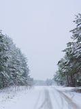 Heavy snowfall Royalty Free Stock Image