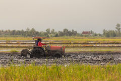 Heavy tractor during cultivation agriculture works Stock Photos