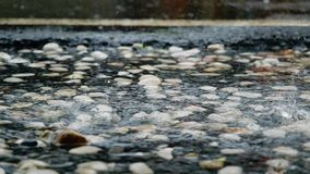 Heavy tropical rain on concrete splashing in a puddle. slow motion. 1920x1080. Hd stock video
