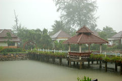 Heavy tropical rain at the resort Stock Photography