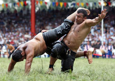 Heavy weight wrestlers compete at the Kirkpinar Turkish Oil Wrestling Festival, Turkey. Oil wrestling is a major summer sport in Turkey royalty free stock images