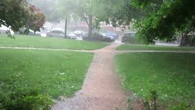 Heavy Wet Rain and Hail Storm in Washington DC in June. Video of hail stones on a walkway in a washington dc neighborhood during a rainstorm in june in spring stock footage