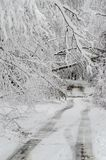 Fallen trees on road in winter snow storm. Heavy wet snow and fallen trees on street in northeast winter snow storm Quinn stock photography