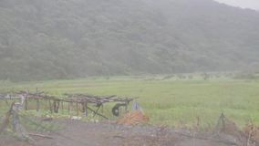 Heavy wind and gusts of rain blowing across field during a typhoon stock video
