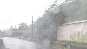 Heavy wind and gusts of rain blowing trees next to houses  during a typhoon. Heavy wind and gusts of rain blowing trees in road during a typhoon stock video footage