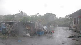 Heavy wind and gusts of rain blowing trees next to houses  during a typhoon stock video