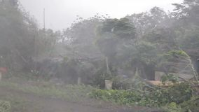 Heavy wind and gusts of rain blowing trees during a typhoon. Heavy wind and gusts of rain blowing trees in road during a typhoon stock video