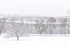 Heavy Winter Snow In Bucharest Royalty Free Stock Photo
