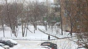 Heavy winter snowfall stock video