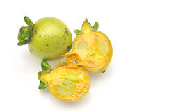 Heban owoc zdjęcie stock