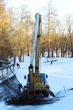 heben Sie durch an, welche Arbeitskräfte Niederlassungen des Baumkalkes im Park im Winter schneiden Stockfotos
