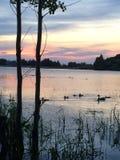 Heber Dolinnych dziewczyn Utah Obozowy jezioro z zmierzchem i sylwetką kaczki Fotografia Stock