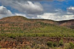 Heber Overgaard, la contea di Navajo, foresta nazionale di Sitgreaves, Arizona, Stati Uniti fotografie stock