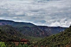 Heber Overgaard, la contea di Navajo, foresta nazionale di Sitgreaves, Arizona, Stati Uniti immagine stock libera da diritti