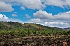 Heber Overgaard, Navajo County, Sitgreaves-staatlicher Wald, Arizona, Vereinigte Staaten stockfotografie