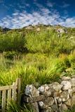 Hebridean Hillside, Harris, Hebrides, Scotland stock photo