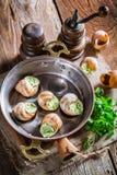 可口蜗牛用大蒜黄油和hebrs 免版税库存照片