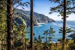 Heceta głowy latarni morskiej stanu parka Sceniczny punkt widzenia w Florencja, Oregon Zdjęcia Stock
