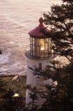 Heceta Head Lighthouse stock image