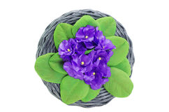 Hecho a mano de mimbre del ataúd adornado con las flores artificiales Imagen de archivo