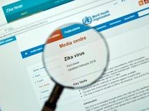 Hechos de la llave del virus de Zika Fotografía de archivo libre de regalías