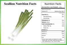 Hechos de la nutrición de la cebolleta Fotografía de archivo