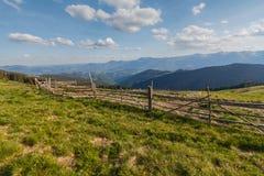 Hecke der Weide gegen einen Hintergrund von sonnenbeschienen Bergen stockfoto