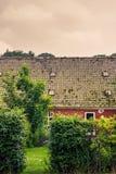 Hecke an einem alten Haus lizenzfreie stockfotografie