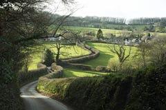 Hecke entlang einem Feldweg in Devon England Großbritannien Stockbild