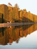 Hecken durch See im Herbst Stockfoto
