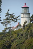 Hecta huvud Lightstation, Oregon kust arkivbilder