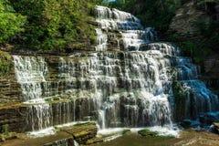 Hector Falls stock fotografie