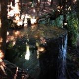 Hector Falls 3 Stockfotografie