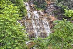 Hector Falls Cascade Stock Afbeeldingen