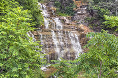 Hector Falls Cascade Stock Images