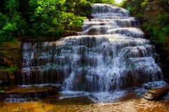 Hector Falls na região dos lagos finger Foto de Stock