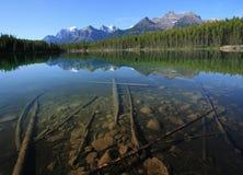 Hector Lake. In Banff National Park, Alberta, Canada Stock Image