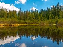 Hed för tre sjö i den Sumava nationalparken arkivbilder