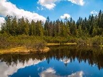 Hed för tre sjö i den Sumava nationalparken arkivbild