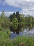 Hed sjö nära Oberbuchen arkivbilder