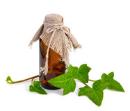 Hedera with a pharmaceutical bottle Royalty Free Stock Photo