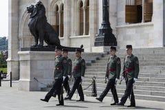 Hedersvakt - parlamentbyggnad - Budapest Royaltyfri Bild