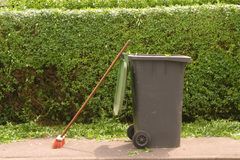 Hedge cleaning Stock Photo