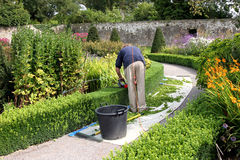 Hedge Cutting Royalty Free Stock Photos