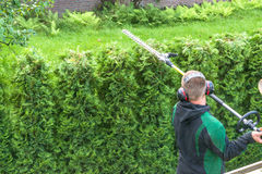 Hedge cutting petrol hedge trimmer. Stock Image