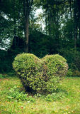 Hedge with heart Royalty Free Stock Photos