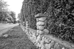 Hedge and little stone wall enclose the property Royalty Free Stock Photos