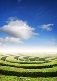 Hedge maze problem solving. Hedge maze under a summers sky, problem solving concept Royalty Free Stock Photography
