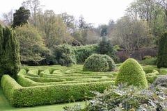 Hedge maze Stock Image