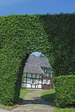 Hedge,Monschau,Eifel Region,Germany Royalty Free Stock Photo